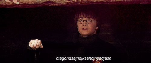 """When he couldn't just say """"Diagon Alley."""" Seriously...the subtitle cracks me up the most  Community Post: 22 Times Harry Potter Wasn't The Brightest Wand In The Bunch"""
