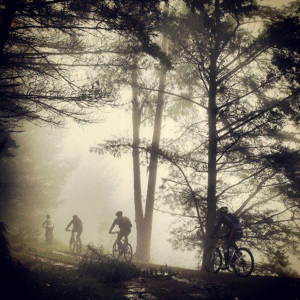 #Raposeando en la niebla, Sierra del Fitu #Arriondas, #Asturias