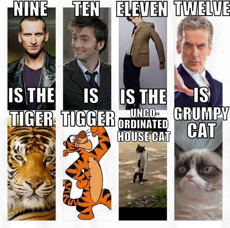Perfect! Doctor who cat regenerations except for the last one I quite enjoy him on the show and as you get to know his character you find that he is witty and very funny