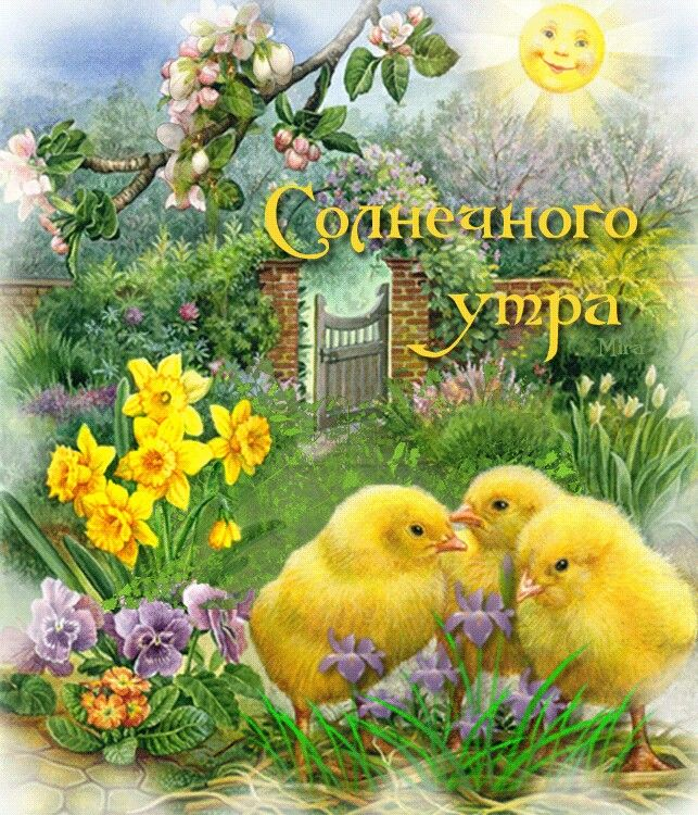 с добрым летним утром картинки с пожеланиями с птицами вам шеф