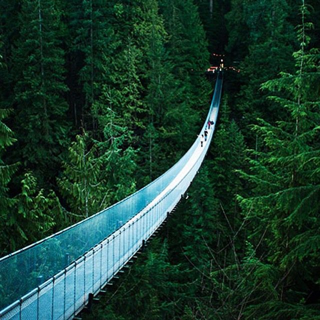 """Face your fear of heights on The Capilano Suspension Bridge. This popular Vancouver tourism attraction is 140 metres long and 70 metres above the Capilano…"""