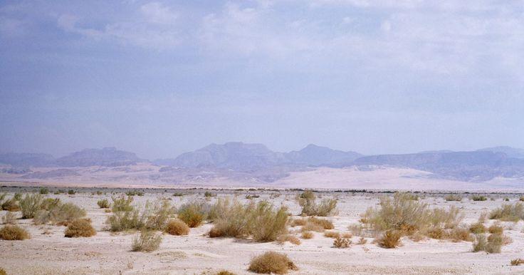 Cómo hacer un diorama del desierto para un proyecto escolar. Un diorama del desierto representa un ambiente árido en miniatura que un estudiante puede utilizar para demostrar el hábitat del desierto. Un grupo entero de niños puede participar en la construcción de un diorama grande o cada estudiante puede construir su diorama individual como parte de una presentación en clase. Utiliza materiales que se ...