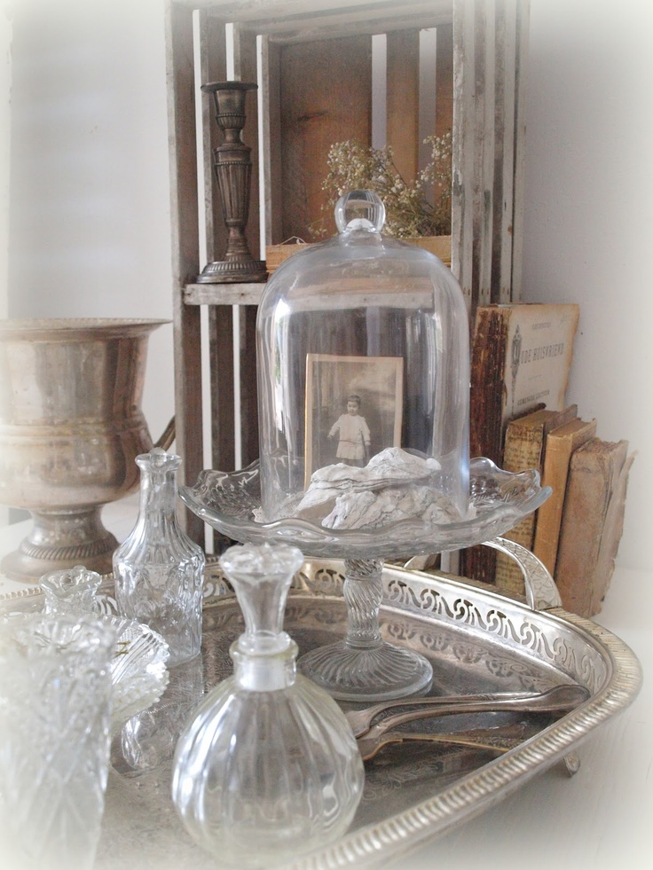 44 Best Under Glass Ideas Images On Pinterest Bell Jars