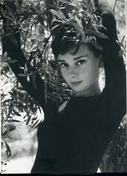 A young Audrey.