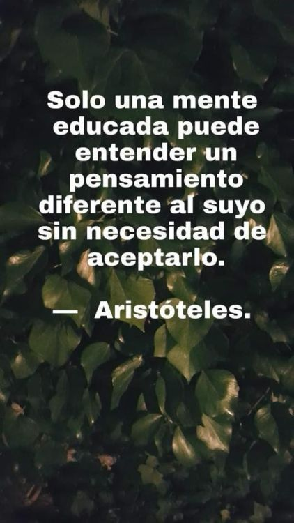 Frases in xxteresantes Inspirational Phrases, Motivational Phrases, Favorite Quotes, Best Quotes, Love Quotes, Vie Positive, Positive Quotes, Cool Words, Wise Words