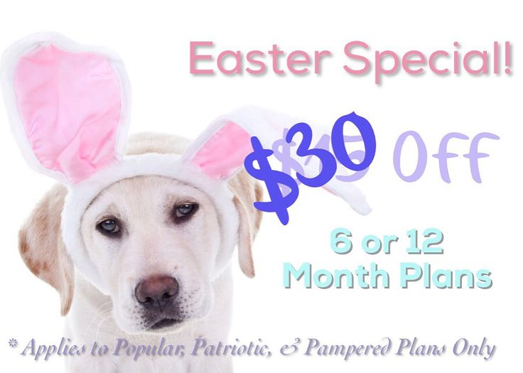 25 best sales discounts coupons oh my images on pinterest an even bigger easter sale 30 off any 6 or 12 month popular patriotic or pampered plans now thats a deal link in bio for plan options use code fandeluxe Gallery