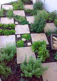 41 cheap and easy backyard diys you must do this summer herb garden designgarden