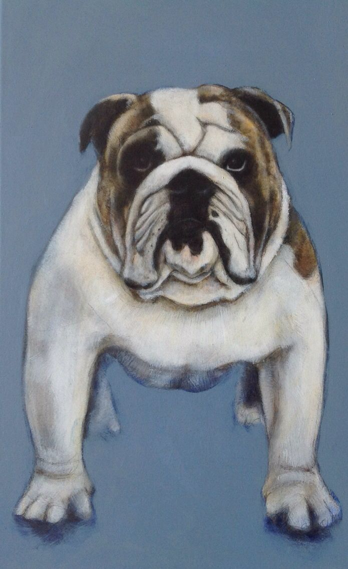 The cutest Bulldog! an Original Oil on Canvas Painting by Charles Hannah Art & Design (Facebook Page).
