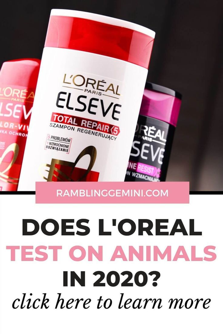 14+ How do they test makeup on animals images