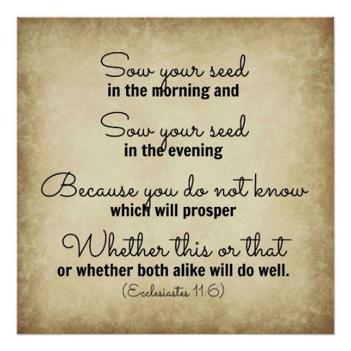 17 Best Images About Bible Verses On Pinterest Popular