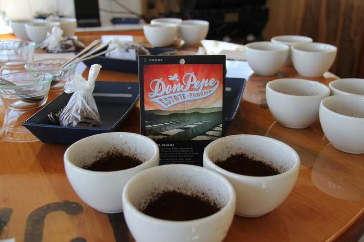 Cupping at the Don Pepe Estate in Panama