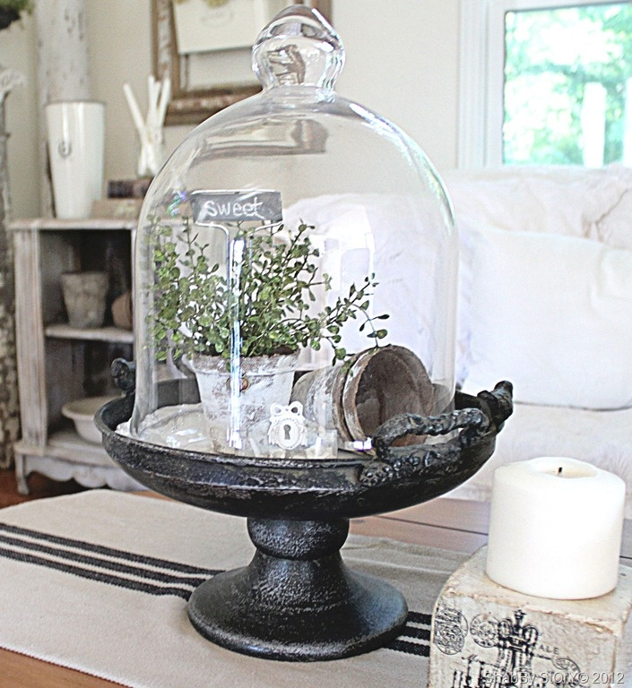 Unique glass domes ideas on pinterest bell
