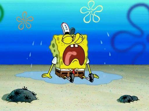 университет губка боб фотки где он плачет обыкновенный весёлый