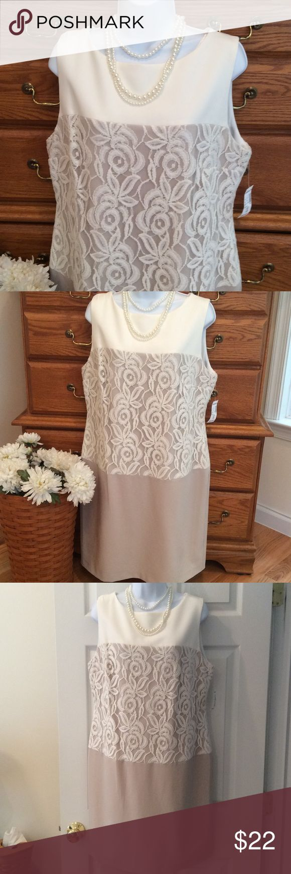 """Dress Barn Gorgeous Ivory/Tan Lace Dress NWT Body is 95% polyester and 5% spandex.  The cream or ivory  lining underneath is 100% polyester.  Approximately 37"""" in length and when laid flat and measured from armpit to armpit it is 21"""" across.  A cream Lace overlays the beige color. Zipper in the back.  Brand new with tags. Dress Barn Dresses Midi"""