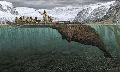 Steller's sea cow #icryevritiem