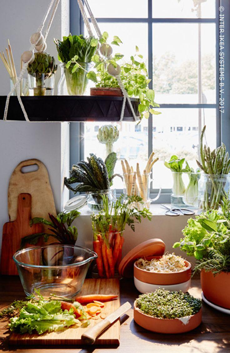 Nous aimons tous manger ! Et cuisiner… Plus encore ! Tous les légumes n'aiment pas le réfrigérateur. Beaucoup d'entre eux préfèrent un coin lumineux sur le plan de travail. Pensez à un pot avec réservoir intégré pour les herbes (elles dureront plus longtemps) et à un plateau suspendu. Découvrez nos idées pour conserver facilement les aliments  ! Vase CYLINDER, lot de 3, 14,99/pce #IKEABE #idéeIKEA  Cooking ... we love it! Let some vegetables bask in the light and make a water reservoir!