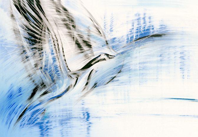 Odlot ptaków wzbudza u Ciebie nostalgię? Nie martw się. U nas możesz oglądać je przez cały rok :) Zapraszamy na www.galeriawchmurach.pl
