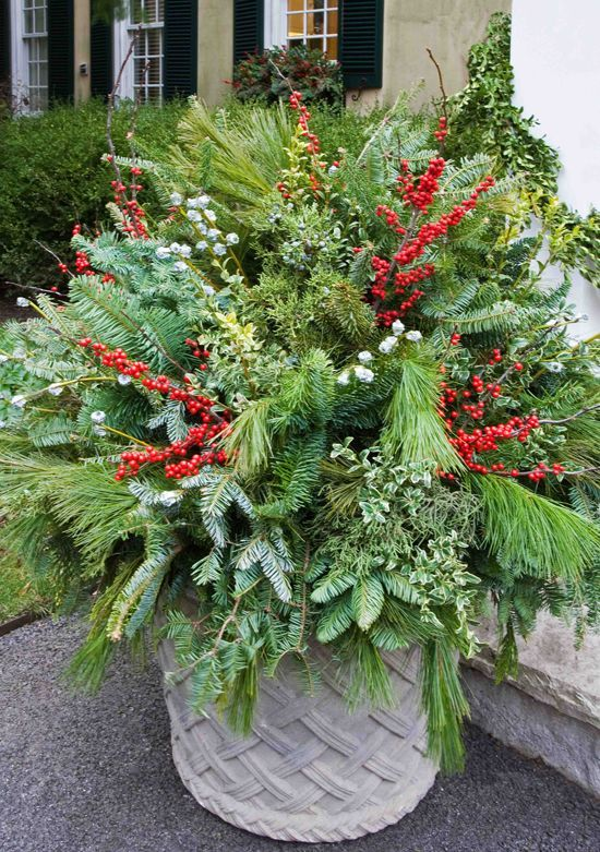 Holiday Tips >> Holiday Outdoor Decorating Tips from Mariani Landscape - Traditional Home® | Christmas Decor ...