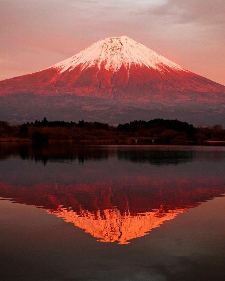 いいね!9,011件、コメント70件 ― shinyaさん(@t.1972)のInstagramアカウント: 「. 「Photograph life」 . .」