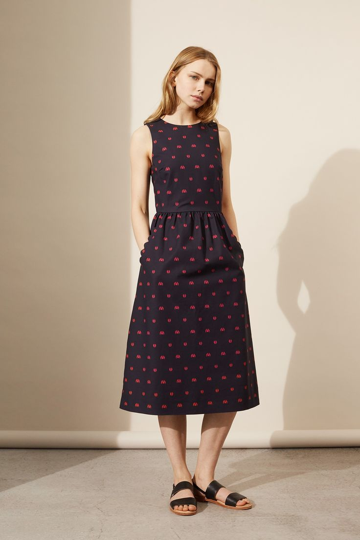 NEW Navy Ladybird Fitted Dress