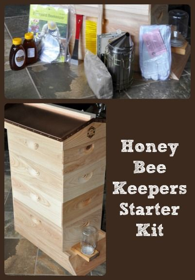 Provides a list of essentials for a beekeeping starter kit and photographs of how those essentials are assembled into a hive for honey bees.