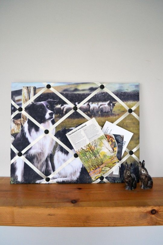 Collie Dog Memo Board