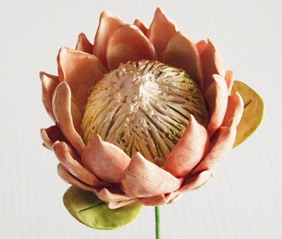 Ceramic King Protea flower hand crafted pottery by BronsCeramics