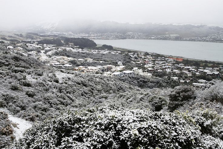 A one in 20 year view over Porirua | © Elyse Childs Photography