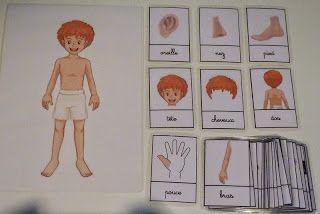 Crapouillotage: Cartes de Nomenclatures : CORPS HUMAIN