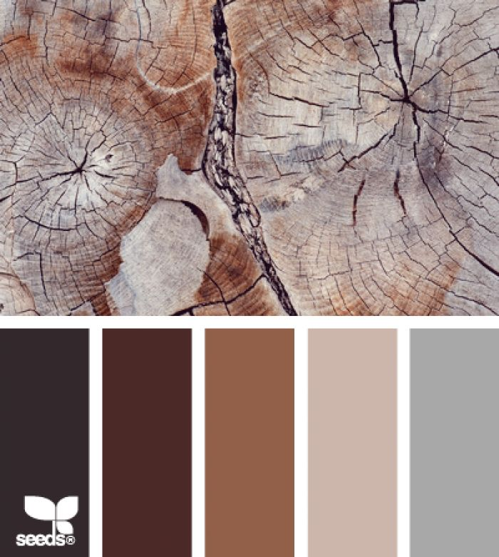 Brown And Blue Interior Color Schemes For An Earthy And: Mooi Kleurenpalet, Hout En Grijs!
