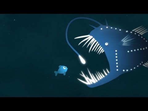 Some lucky animals are naturally endowed with bioluminescence, or the ability to create light. The firefly, the anglerfish, and a few more surprising creatures use this ability in many ways, including survival, hunting, and mating. Leslie Kenna investigates this magical glow - and our quest to replicate it.
