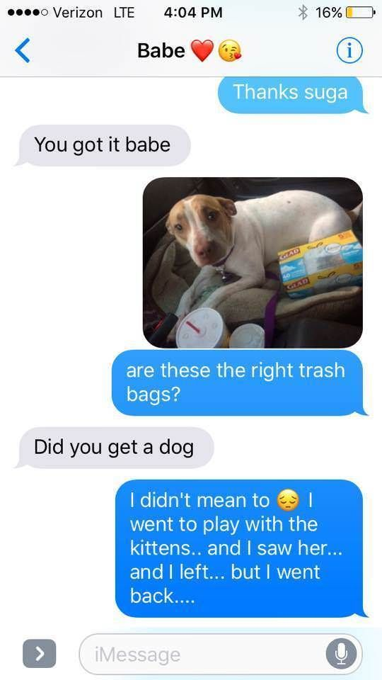 33 FUNNY MEMES FOR TODAY #161