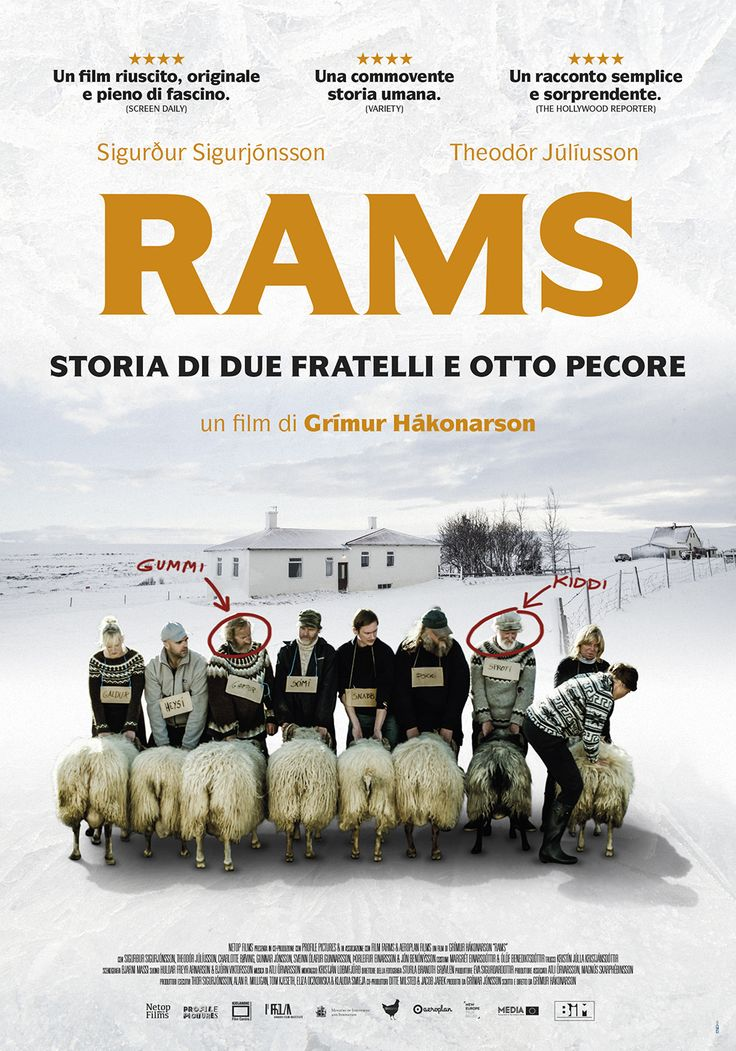 "Italian and International poster for the movie ""Rams"", winner of ""Un Certain Regard"" Best Film award at Cannes Festival 2015"