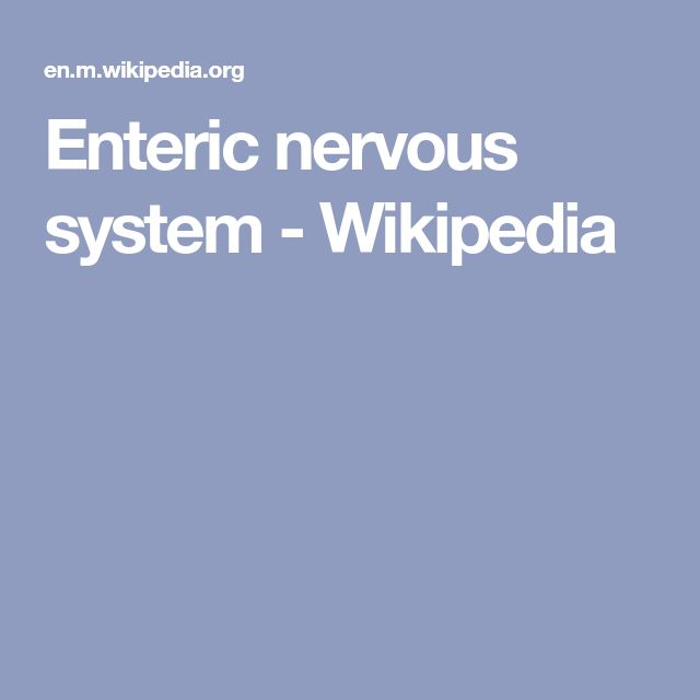 Enteric nervous system - Wikipedia