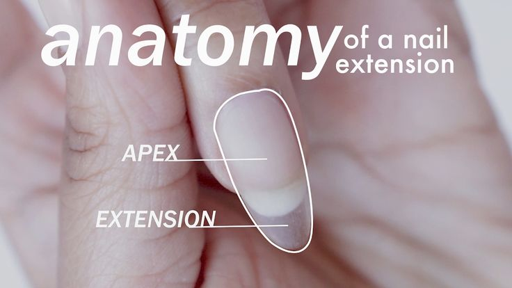 Anatomy of a GEL EXTENSION for  BEGINNERS | abetweene