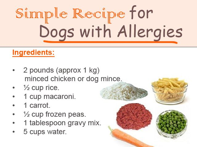 Simple Recipe for Dogs with Allergies | Flickr - Photo Sharing!