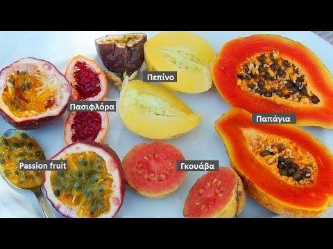 Τροπικά φρούτα στα Τέρτσα Βιάννου, Κρήτη - YouTube