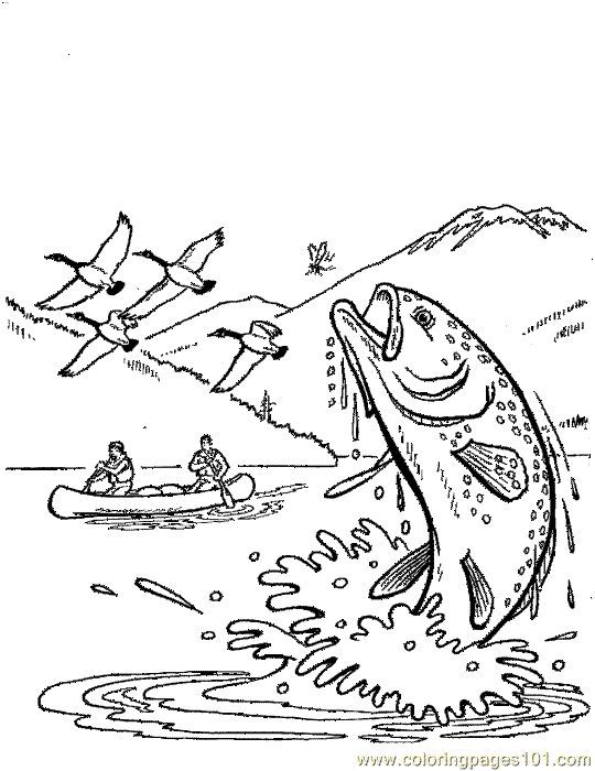 River Fish Coloring Pages Trout