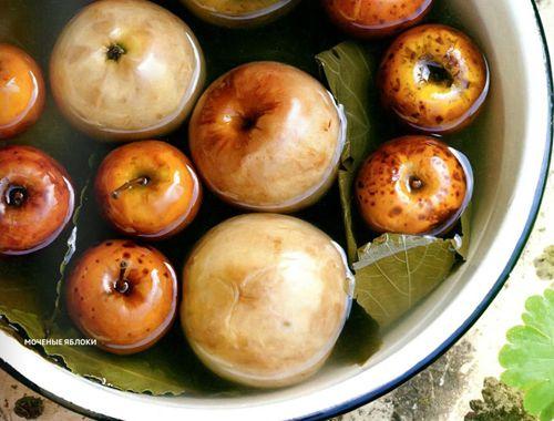 Рецепты заготовок. Моченые яблоки в банках  Вас все еще интересуют рецепты заготовок? – Предлагаем заготовить моченые яблоки в банках. Рецепт из журнала Джейми Оливера.  Моченые яблоки в банках oт Антона Булыгина.
