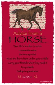 Advice from a horse | Advice From Quotes | Animal spirit ...