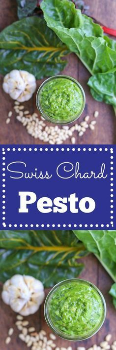 Swiss Chard Pesto - A great way to use up greens that can easily wilt in your fridge forgotten. This pest is so flavorful and creamy! A delicious spread for pasta, veggies, bread, or soups! | louloubiscuit.com