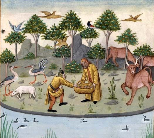 Iles Fortunes, Secrets d'histoire naturelle, d'après Solin, 1480-1485, Robinet Testart.