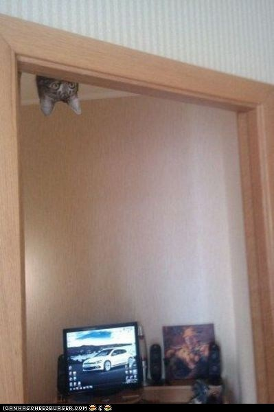 is watching you