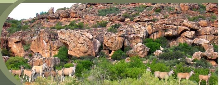 Traveller's Rest Cederberg Accommodation - near Wupperthal - 34 km's from Clanwilliam