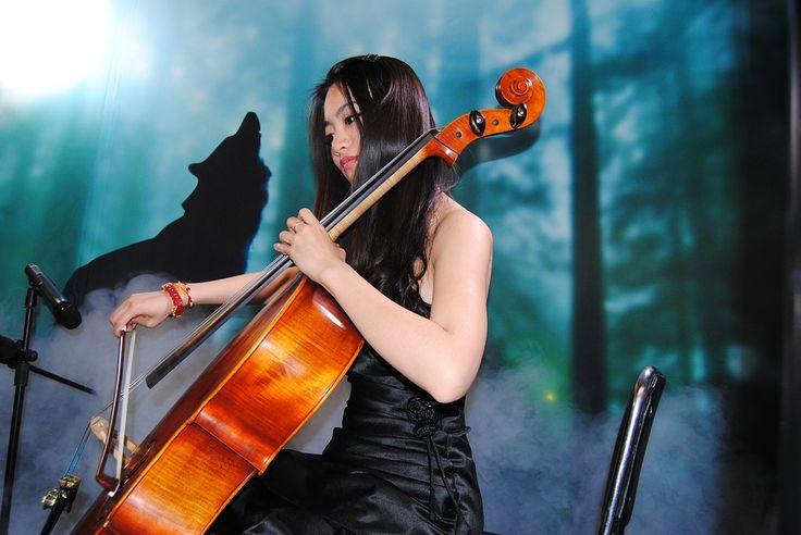 Model, Violin, Beauty, Music, Concert, Woman, Musician