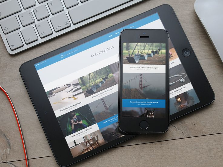 TZ Plus Gallery WordPress Social Gallery Plugin by Sonny for TemPlaza