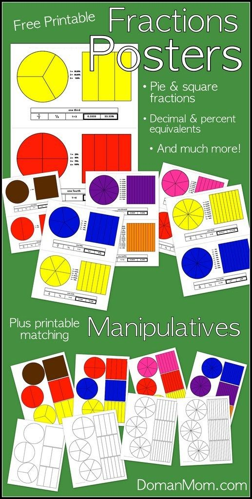 FREE Printable Fraction Posters and Manipulatives Math Resources