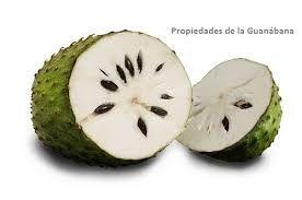 Resultado de imagen para Guanábana