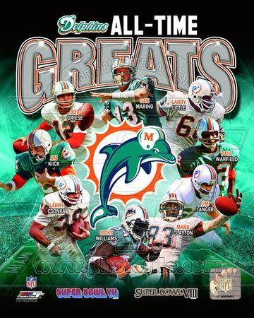 Miami Dolphins stars