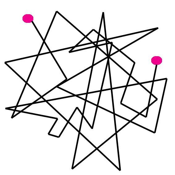 cogito, ergo sum: Образовательная траектория, программа или маршрут?
